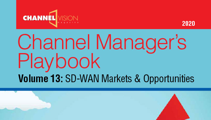Channel Manager's Playbook Volume 13